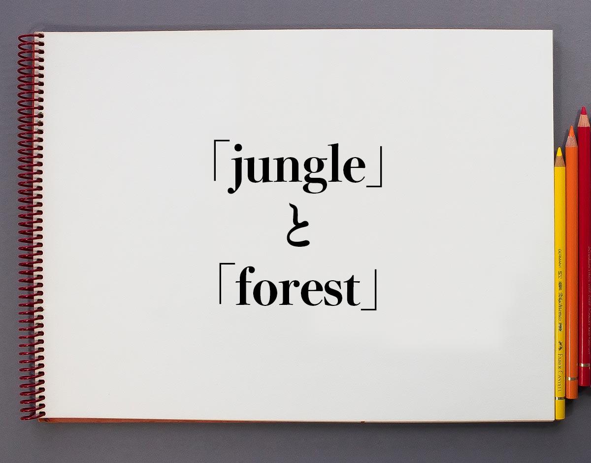 「jungle」と「forest」の違い