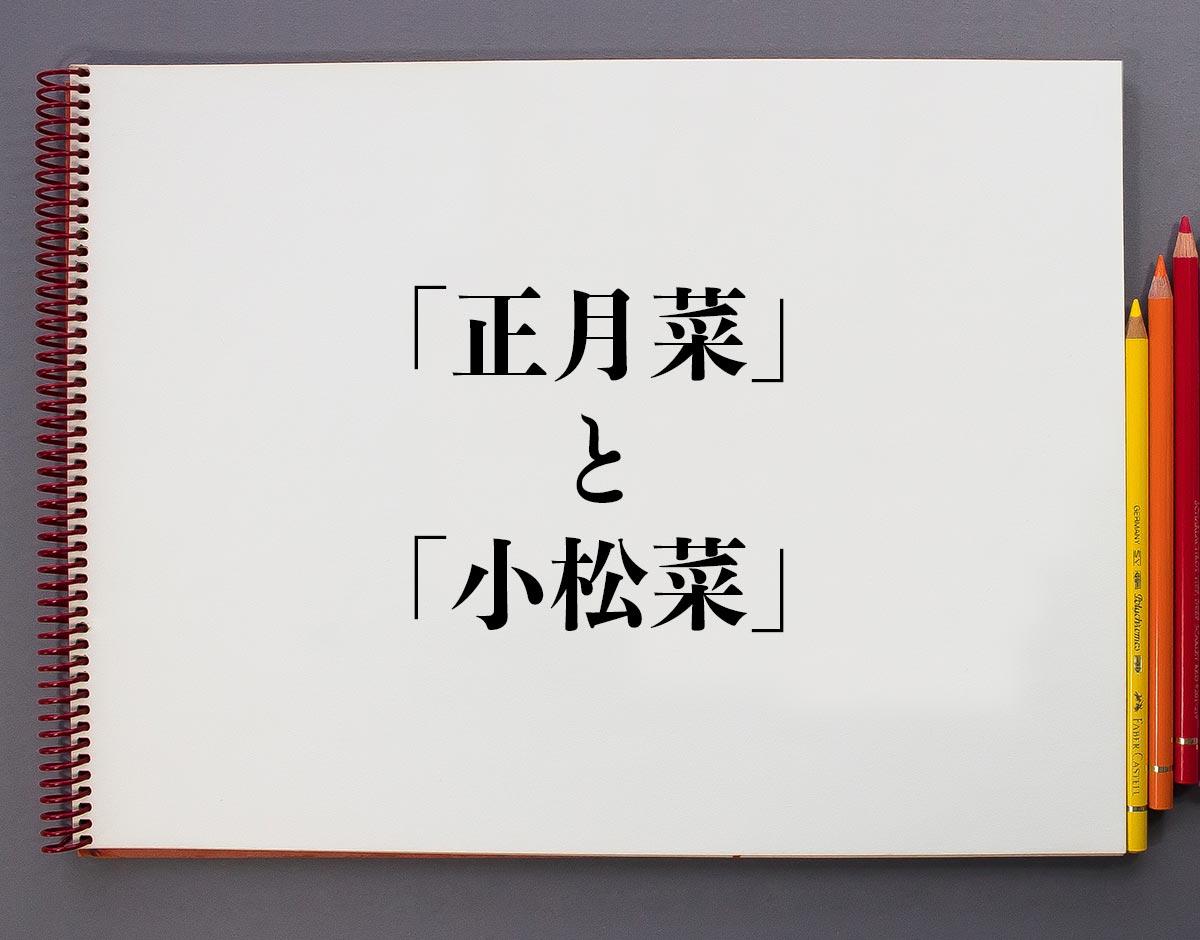 「正月菜」と「小松菜」の違いとは?