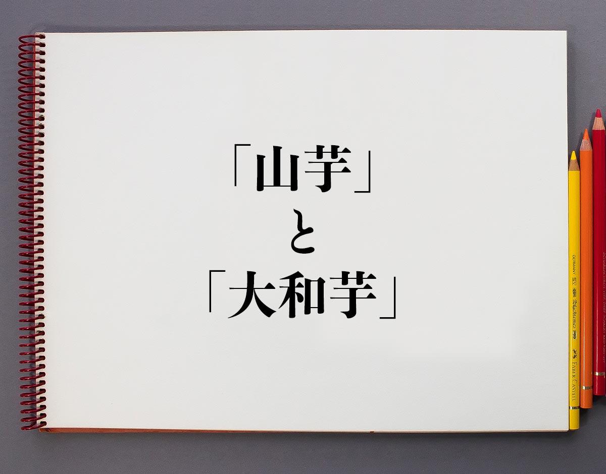 「山芋」と「大和芋」の違いとは?